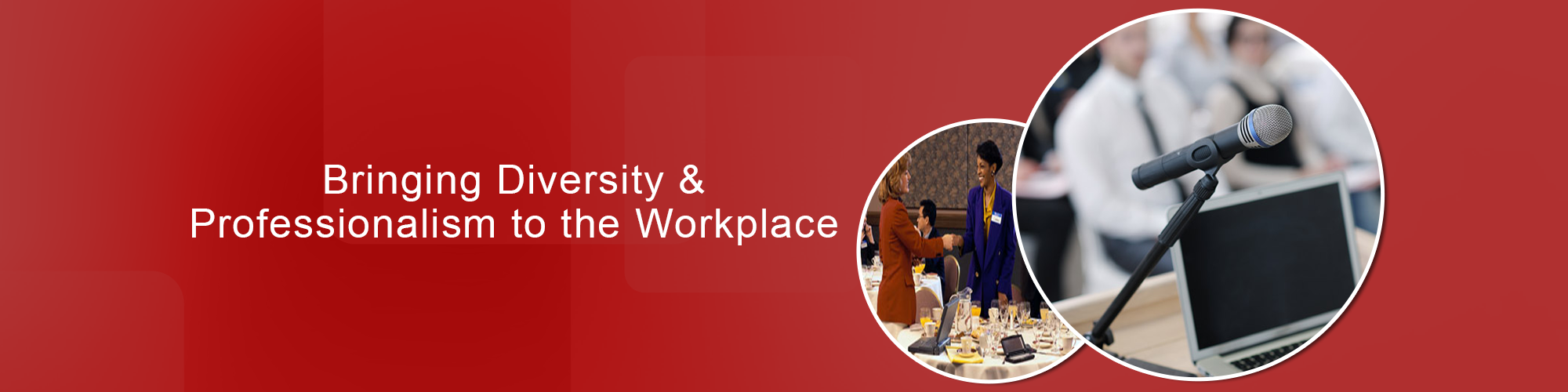 Bringing Diversity and Professionalism to the Workplace